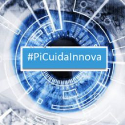 Logo del grupo PiCuidaInnova